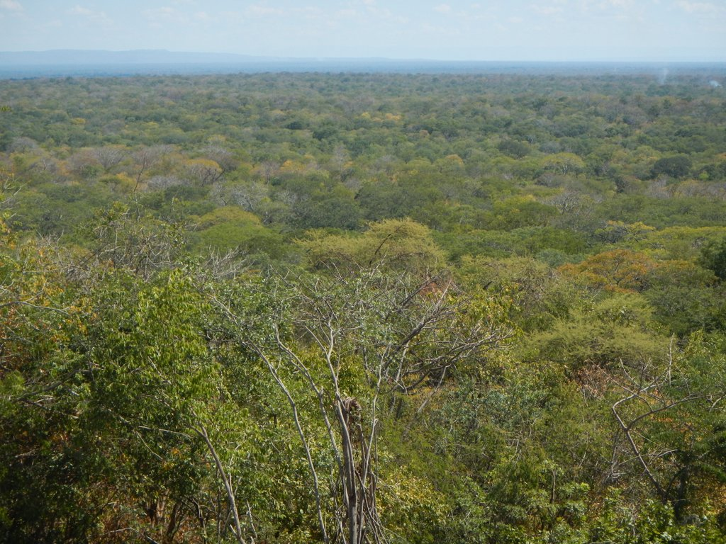 Luangwa valley opens up before my eyes