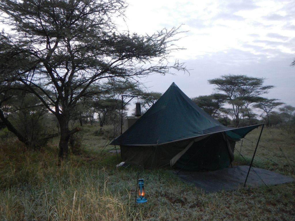 My new home , in the middle of the Serengeti , wild and wonderful.