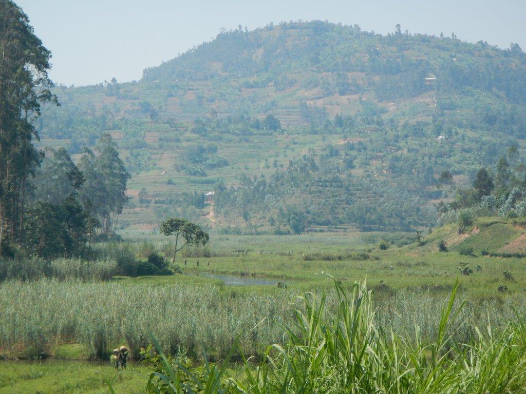 Land at work