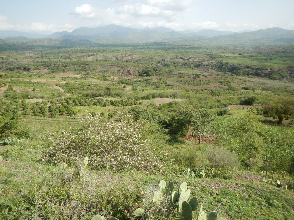 Exceptional Ethiopia