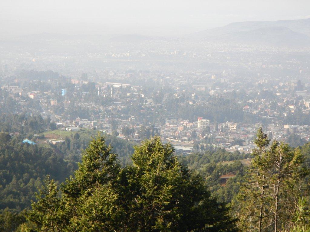 Morning mist . Addis below .