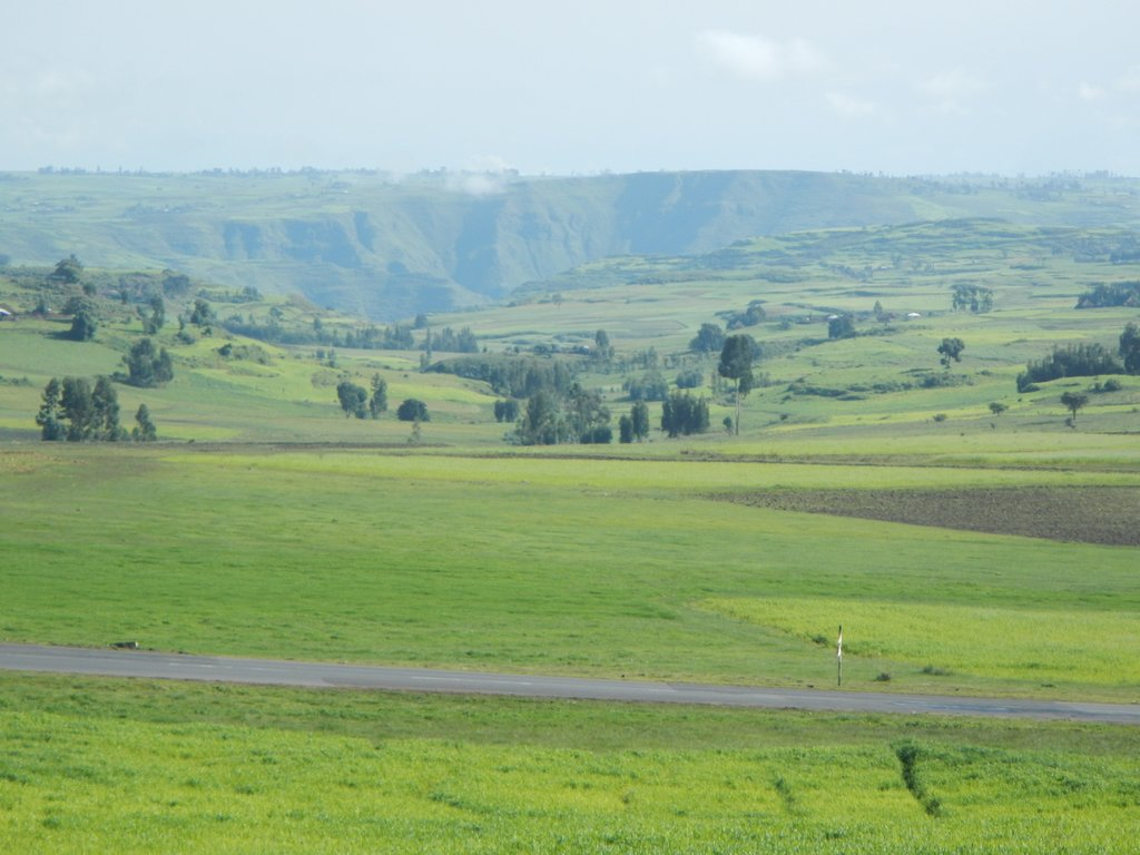The rich green lands of agricultural Ethiopia.