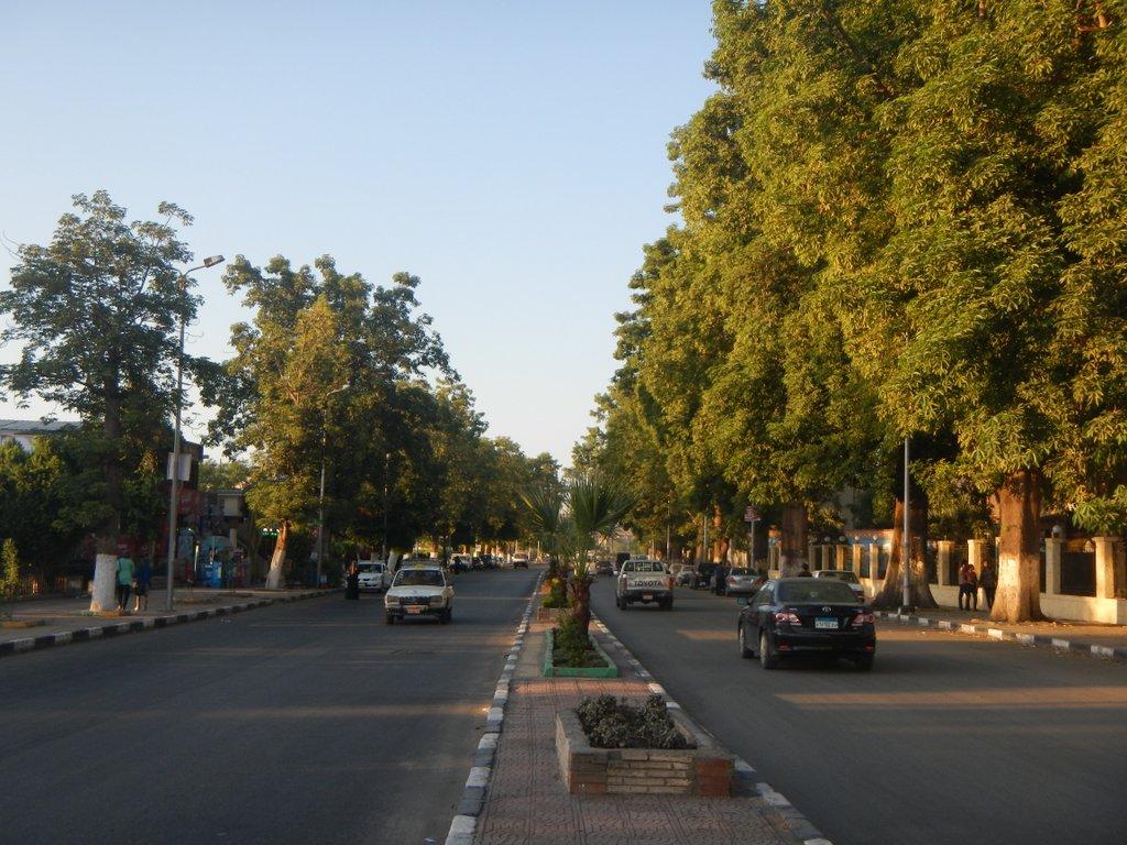 Main road along the Nile in Aswan .