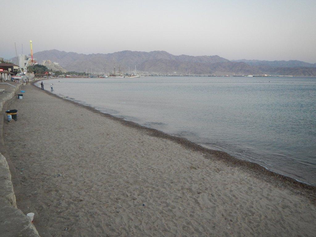 The beach at dusk .