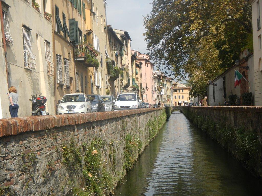 Loving Lucca