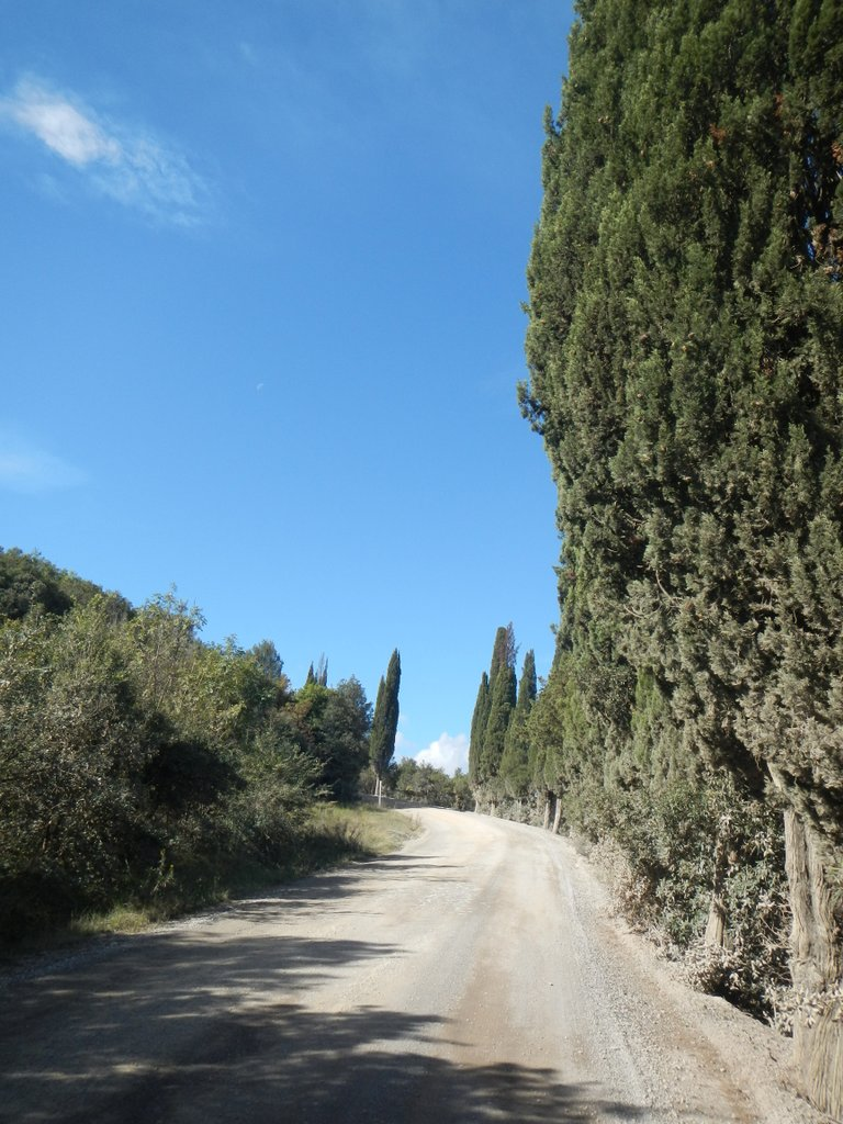 Back to dust and dirt , exploring rural Tuscany.